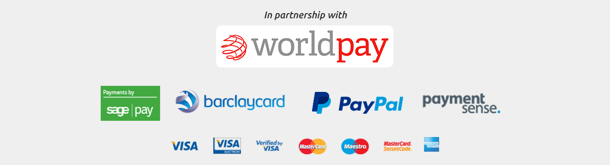 Secure Online Payment Providers